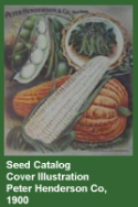 Seed Catalog cover illustration Peter Henderson Co, 1900